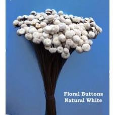 Floral Buttons - Natural White - 3 oz bunches