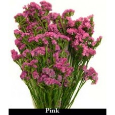 Sinuata Statice - Rose - Preserved - 4oz