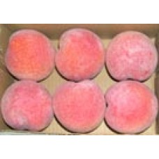 "3½""  Peach - Look Real - 6 per box - Artificial"