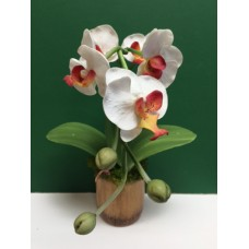 Orchid Plant-White in Wood Base-Artificial-4 Available