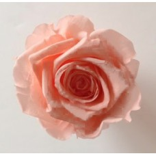 Preserved Rose Heads - Lt  Peach - 8 Per Box